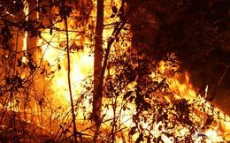 Rừng tiếp tục bùng cháy tại Nghệ An và Hà Tĩnh
