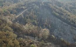Clip nhìn từ trên cao: Cánh rừng thông xám xịt ở Hà Tĩnh sau 4 ngày lửa bùng cháy kinh hoàng khiến nhiều người xót xa