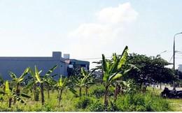 Gọi đầu tư, Đà Nẵng tính hợp thửa hơn 10.000 lô đất tái định cư