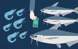 VASEP: Xuất khẩu thủy sản 6 tháng cuối năm sẽ phục hồi, có thể đạt 5 tỷ USD