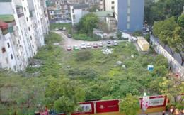 Để hơn 4.000 m2 đất quây tôn cho cỏ mọc sát Bờ Hồ, Hà Nội nói gì?