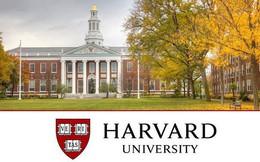 """""""Vỡ mộng"""" Harvard: Bệnh thành tích, nạn """"cha truyền con nối"""", phân biệt giới tính, sinh viên không hẹn hò vì thiếu kỹ năng"""