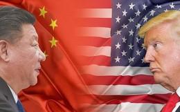'Nếu bị Mỹ trừng phạt thuế, nhiều ngành hàng Việt xóa sổ'