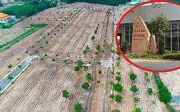 """Buộc cưỡng chế dự án """"ma"""" của địa ốc Alibaba do chây ỳ tháo dỡ"""