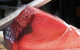Công nghệ Nhật giữ cá ngừ tươi 20 ngày, rau củ dùng được trong 2 năm