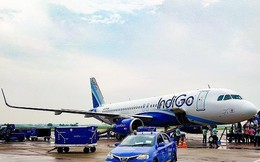 Hãng hàng không giá rẻ lớn nhất Ấn Độ mở đường bay tới VN