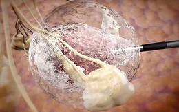 """Chuyên gia dạy cách ăn uống lành mạnh và những cảnh báo quan trọng để """"loại bỏ"""" ung thư"""