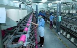 Chuyên gia ANZ lạc quan về triển vọng dài hạn của nền kinh tế Việt Nam