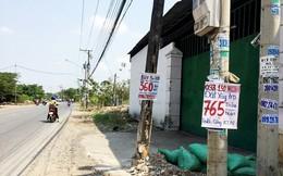 """Long An: Bán """"chui"""" dự án, một DN BĐS bị đình chỉ hoạt động kinh doanh"""
