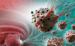 Những thực phẩm thúc đẩy tế bào ung thư: PCT Hội Ung thư HN khuyên người bệnh tránh xa