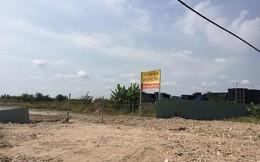 Tạm dừng bán đấu giá tài sản tại KCN Phong Phú
