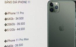 """iPhone 11 Pro Max hét giá 50 triệu vẫn có người mua, iPhone 11 """"giá rẻ"""" lại chẳng ai đoái hoài"""
