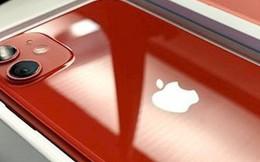 Những chiếc iPhone 11 đầu tiên đã được giao đến tay khách hàng
