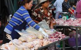 Giải cứu gà giá rẻ: Cách nào?
