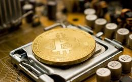 Bitcoin liệu có 'sụp đổ'?