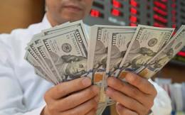 Thặng dư thương mại và dự trữ ngoại hối kỷ lục giúp hạ nhiệt tỷ giá