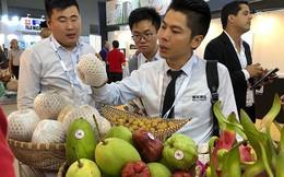 Trung Quốc siết hàng nhập khẩu, nông sản Việt lao dốc