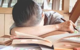 """Khi con nói """"Mẹ ơi, con không muốn học"""", đây sẽ là câu trả lời của cha mẹ có thể thay đổi cuộc đời con"""