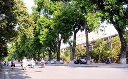 Hà Nội cấm đường phục vụ thi công đường sắt đô thị, đường đua F1
