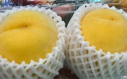 Đào tiên Nhật Bản có giá gần 1 triệu/cặp hút giới nhà giàu Việt