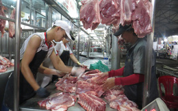 Giá lợn hơi tăng phi mã, hơn 10.000 đồng/kg