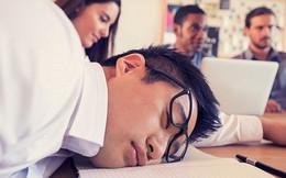 """Ngủ quá nhiều có thể khiến bạn trở thành """"não cá vàng"""""""