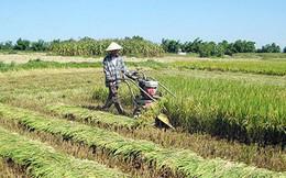 Đề xuất miễn thuế sử dụng đất nông nghiệp đến 2030