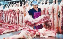 Tiêu hủy hơn nửa triệu con lợn, Hà Nội thiếu gần 100 nghìn tấn thịt