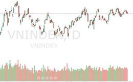Xu thế dòng tiền: Khó có sóng quý 3, thị trường trông đợi điều gì?