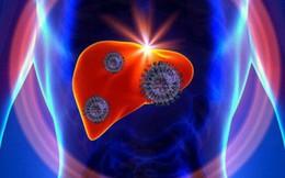 """5 tín hiệu """"đỏ"""" cảnh báo sớm bệnh viêm gan: Đừng bỏ qua dù chỉ là một triệu chứng nhỏ"""
