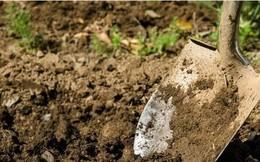 Tự đào hang giấu vàng vẫn bị mất, người đàn ông tái mặt khi được bày kế lấy lại tài sản