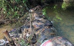 Xin lỗi, cấp miễn phí một tháng: Nước sạch sông Đà hết trách nhiệm?
