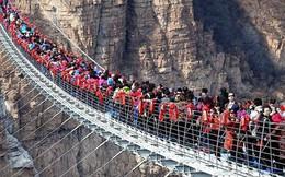 """Nóng: Hơn 32 công trình cầu kính nổi tiếng của Trung Quốc bất ngờ đóng cửa, trong đó có cả """"thiên đường sống ảo"""" Trương Gia Giới"""