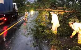 Đà Nẵng: Hàng loạt cây xanh ngã chắn đường, giao thông hỗn loạ