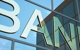 Ngân hàng Nhà nước có thể mua cổ phần ngân hàng được kiểm soát đặc biệt?