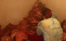Hơn 1,5 tấn thịt dính tả lợn Châu Phi giấu trong kho lạnh