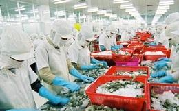 Top đầu thế giới về xuất khẩu, thuỷ sản Việt Nam vẫn đối mặt hàng loạt hạn chế