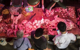 Người Trung Quốc phải giảm ăn thịt lợn vì giá quá cao