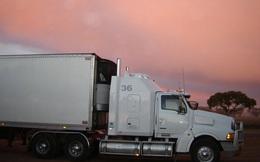 Lại phát hiện xe tải chở 16 người nhập cư trái phép vào Anh