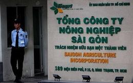 Thanh tra lại phát hiện hàng loạt sai phạm trong sử dụng đất công của Sagri