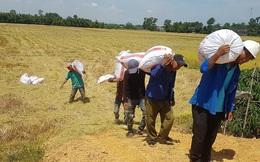 Campuchia chiếm top đầu Châu Âu, Việt Nam tìm đường sang châu Phi