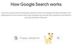Google thao túng kết quả tìm kiếm, ẩn các chủ đề gây tranh cãi, ưu tiên các công ty lớn