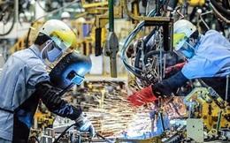 Đầu tư từ Hồng Kông, Trung Quốc tăng mạnh