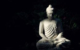 Đức Phật chỉ ra 4 kiểu người cơ bản trong đời: Kiểu đầu đáng quý, kiểu cuối đáng thương, bạn thuộc kiểu nào?