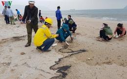 Khắc phục môi trường vì dầu tràn sau sự chìm tàu hàng 9.000 tấn