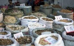 Phá đường dây buôn lậu hàng chục tấn dược liệu làm thuốc bắc