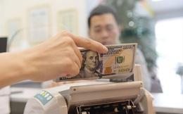 Dòng kiều hối tăng: Tin vào sự ổn định của nền kinh tế Việt Nam