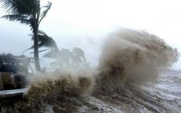Công điện chỉ đạo khẩn trương ứng phó bão số 8