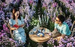 """Check in gấp ở 4 vườn hoa đẹp nhất Chiang Mai để biết vì sao nơi đây được mệnh danh là """"đóa hồng phương Bắc"""" của đất Thái"""