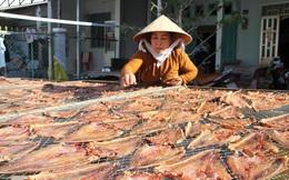 [Photo] Làng khô xứ biển Trần Đề chuẩn bị nguồn hàng phục vụ Tết